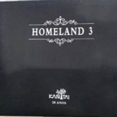 Papel de Parede Importado Homeland 3