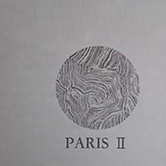 Papel de Parede Importado paris II