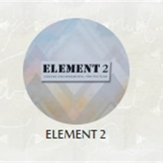 Papel de Parede Importado Elements II